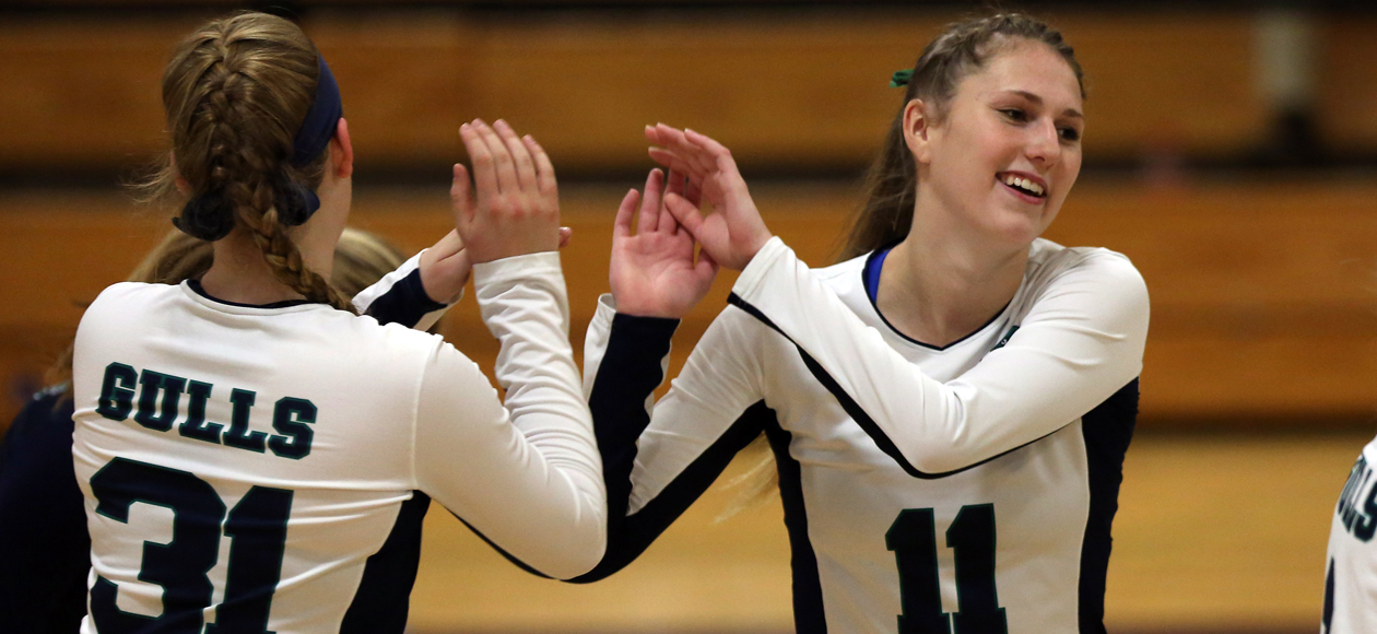 Image of Zoey Gifford and Emma Mancini celebrating an Endicott point.