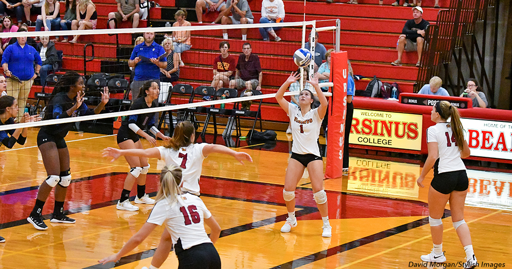 Volleyball Swept by Dickinson