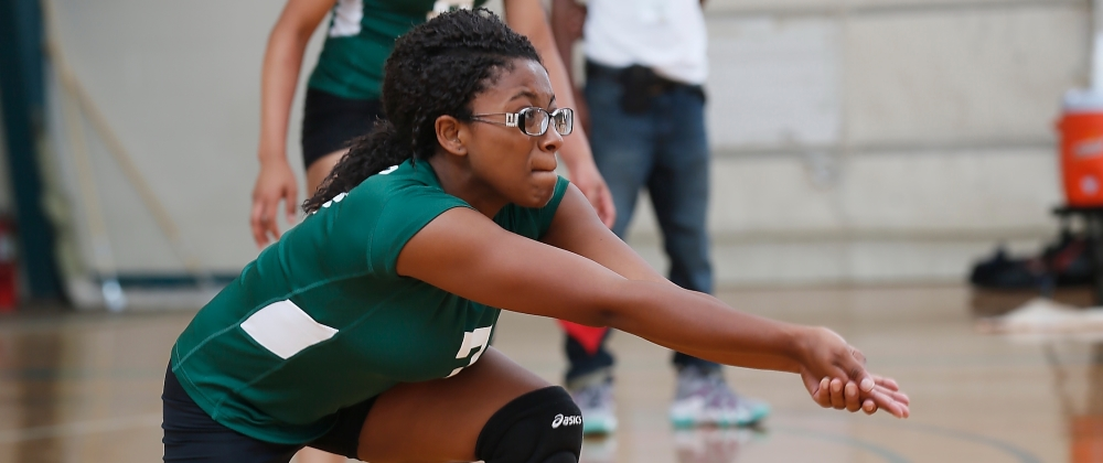 Elms Sweeps Women's Volleyball