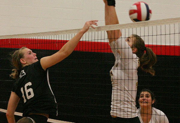 Volleyball: Freshman shines in Panthers' match at Berry