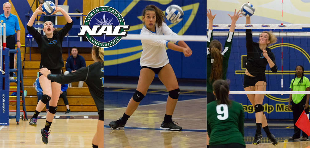 Volleyball Sweeps NAC Weekly Awards
