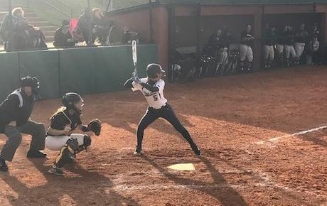 Lions Fall Short to Thiel in Softball