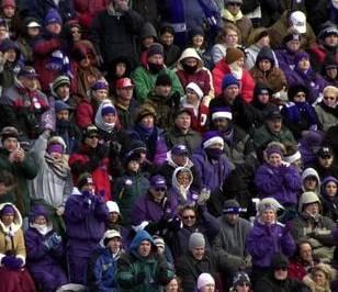 Fans in purple
