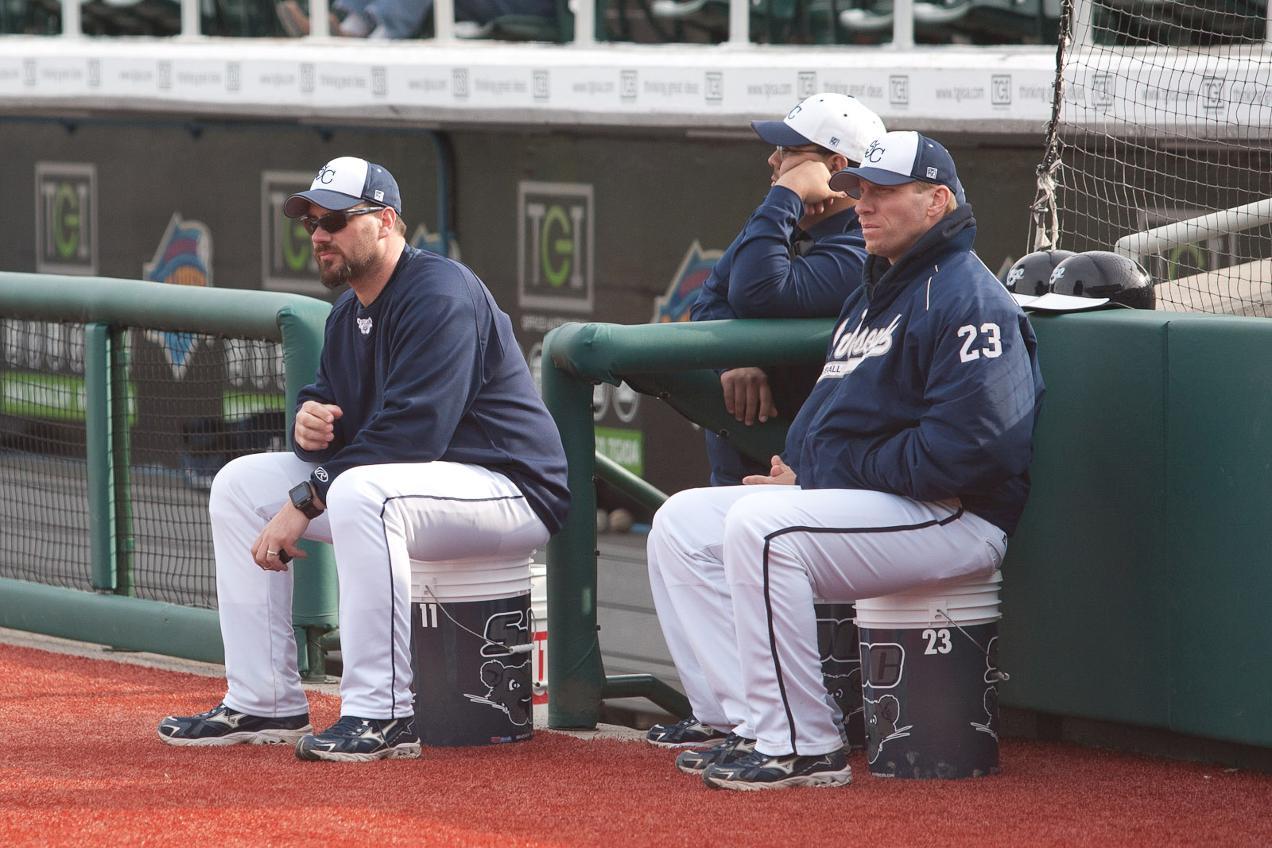 Baseball Gameday: Bears vs  SUNY Canton and CCNY - St