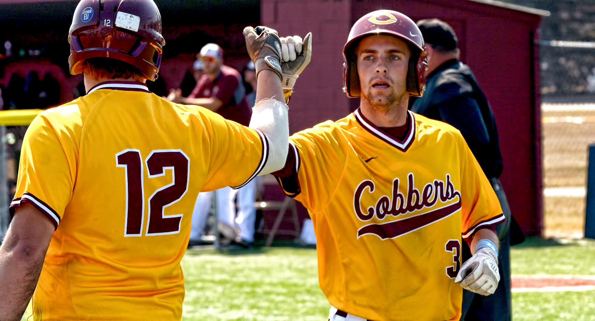 Junior Nate Hoeft is congratulated after scoring one of the game-tying runs in the seventh inning in Game 2 of the Cobbers' sweep over Augsburg.