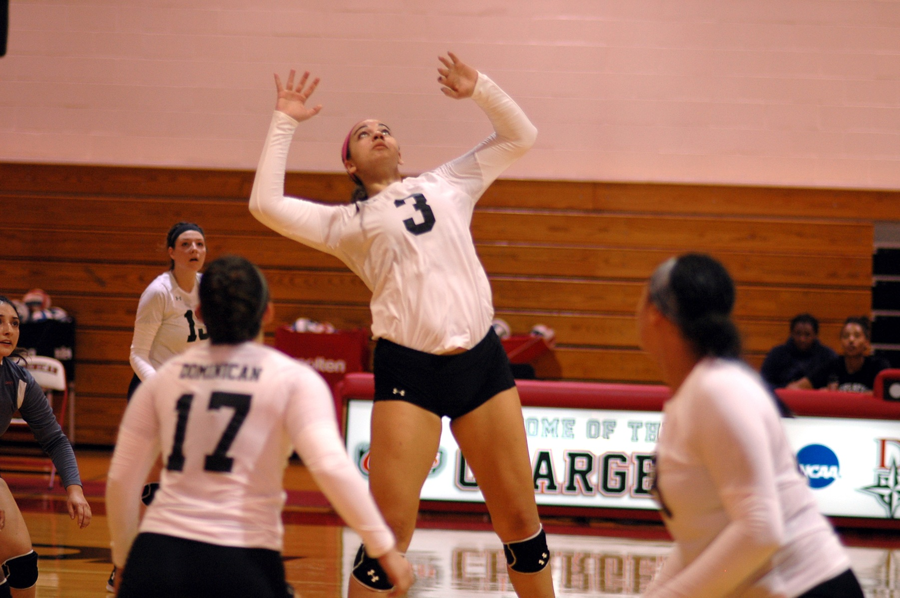 VOLLEYBALL VICTORIOUS OVER BEARS