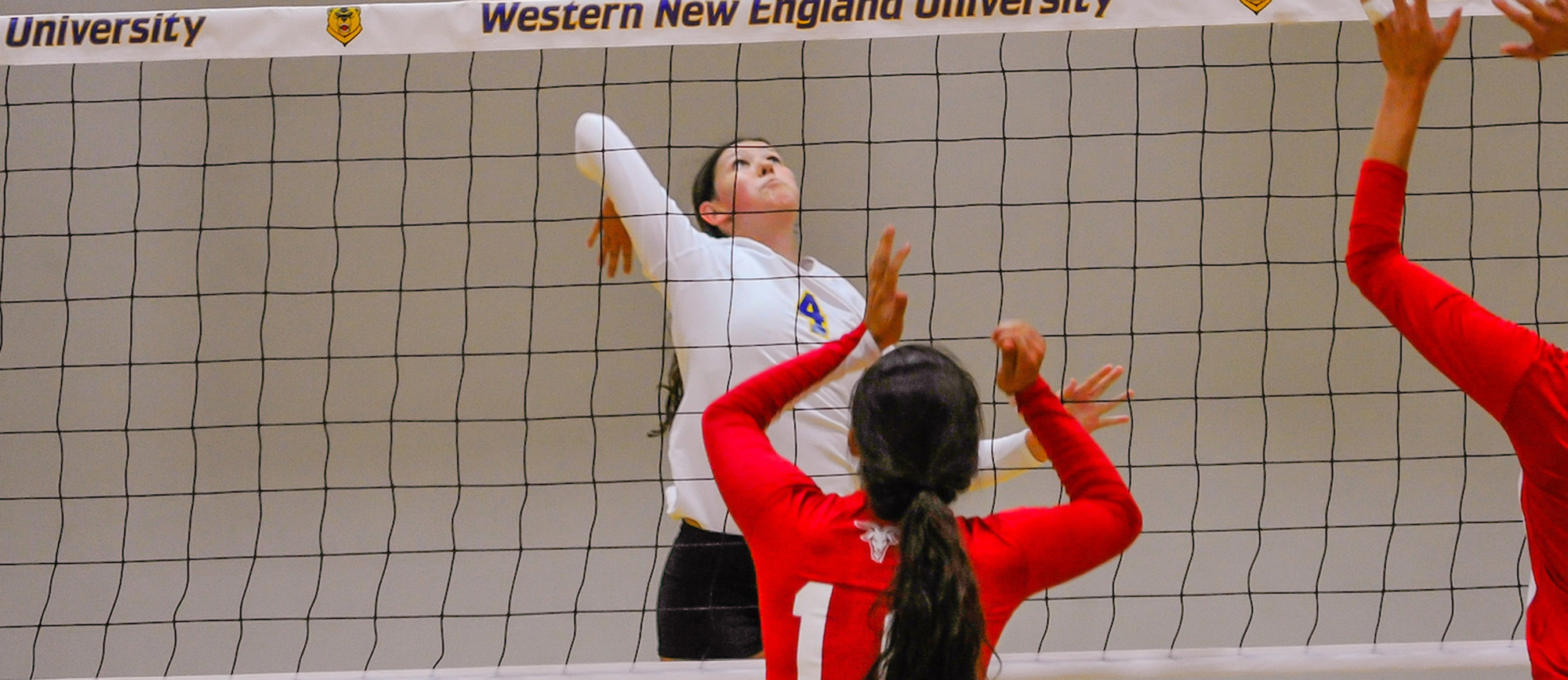 Western New England Comes Up Short in Five-Set Loss at WPI