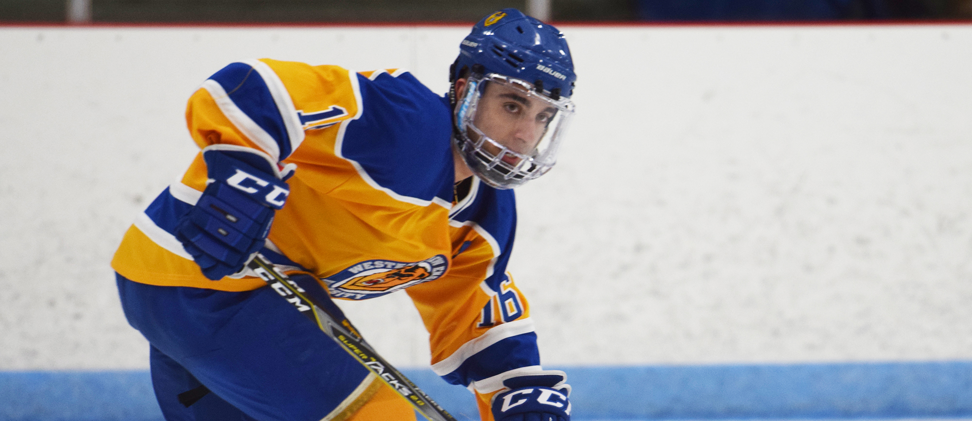 Senior forward David DiSchiavi scored his first goal of the season in Western New England's loss at Endicott on Saturday (photo by Rachael Margossian).