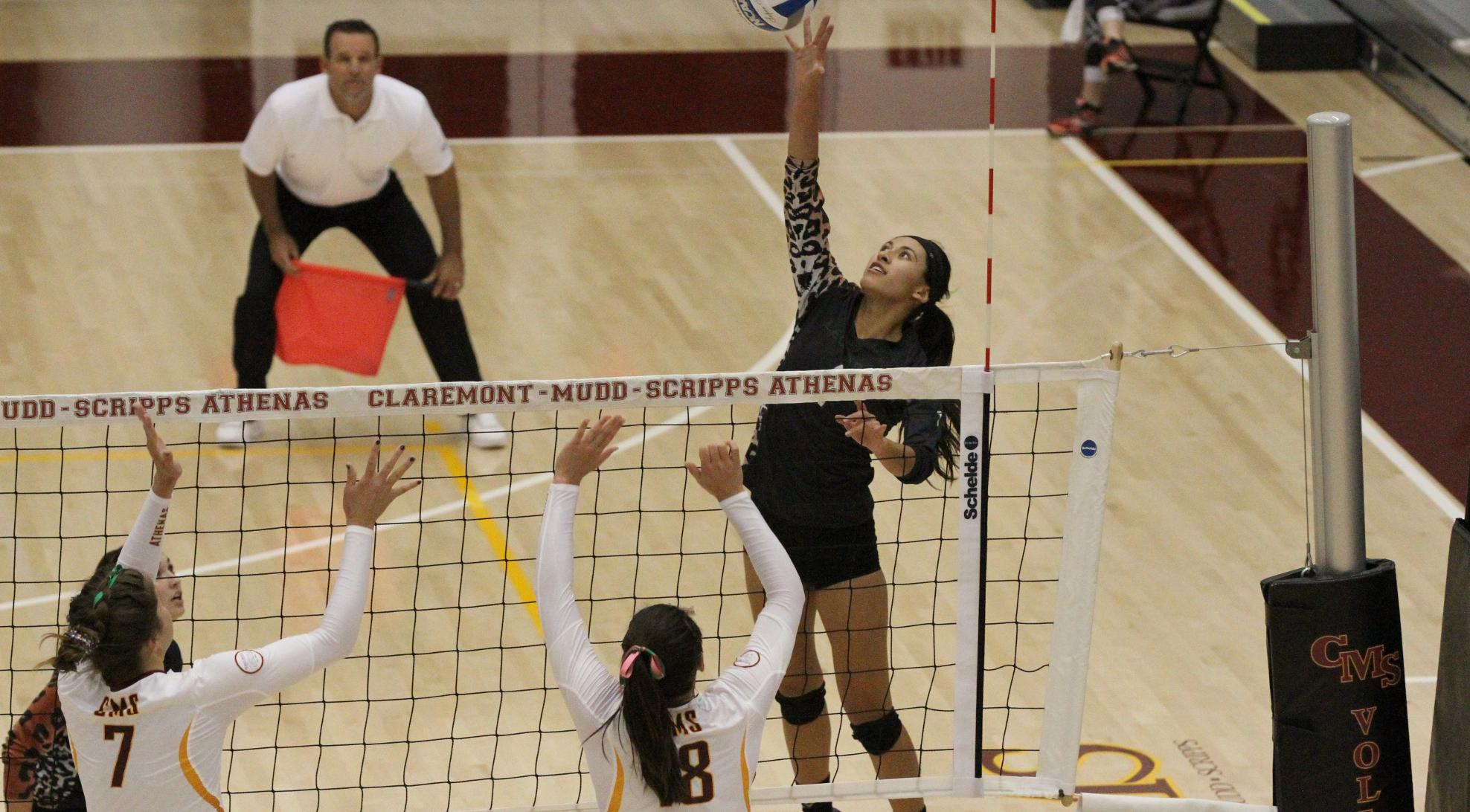 No. 22 Volleyball cruises past Caltech