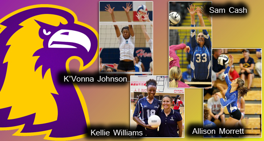 Zelenock, Golden Eagle volleyball team adds four for 2014