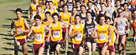 Thumbnail photo for the Cross Country @ SCIAC (11-2-13) gallery