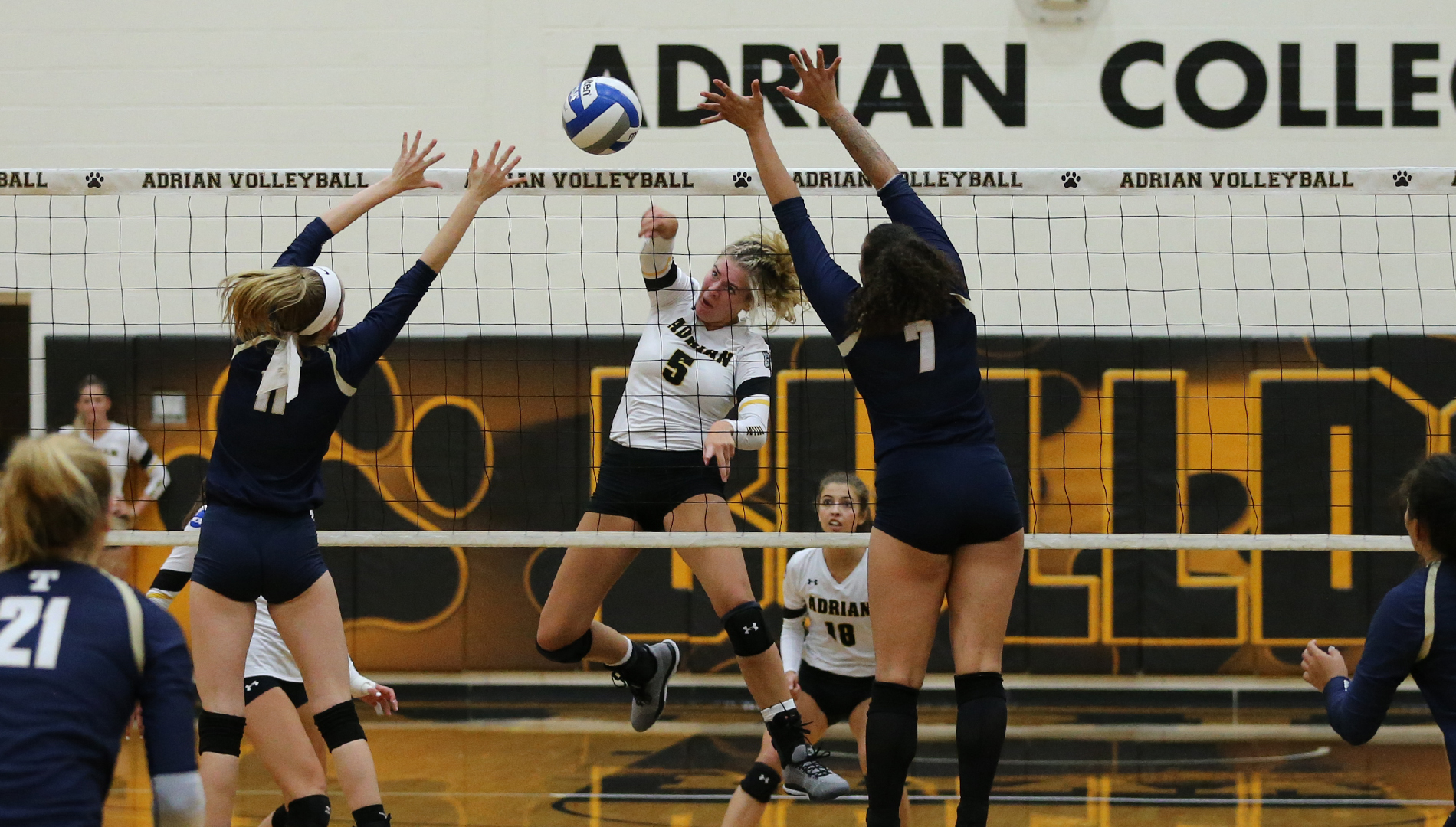 Bulldogs Roll Past Thunder with Fourth Set Comeback