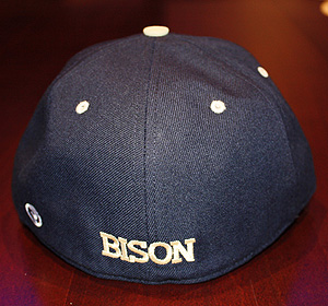 Fitted Cap back picture