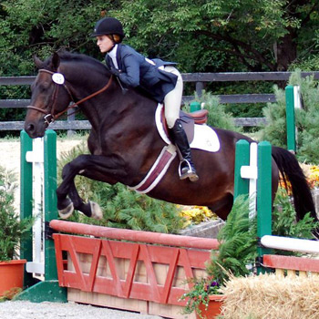 Riding Competes in Tournament of Champions Winter Classic