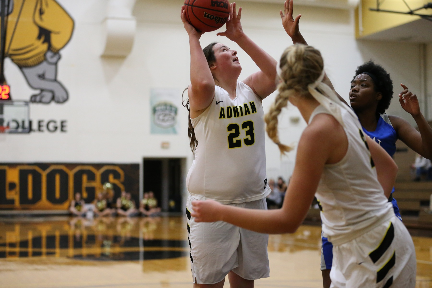 Katie Crawford had a statline of 13 points, nine rebounds, two assists, one steal and two blocks at Albion Saturday. (Action photo by Mike Dickie)
