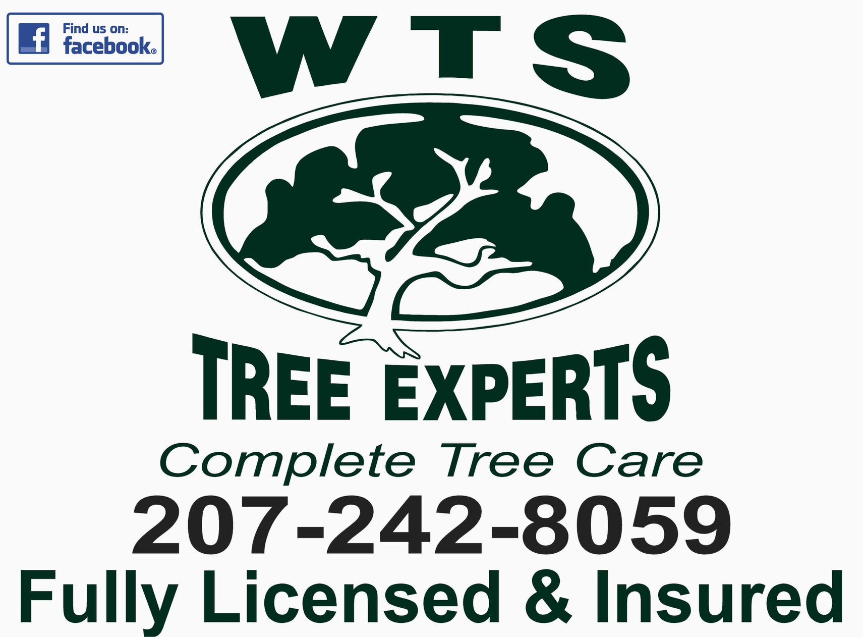 WTS Tree Experts