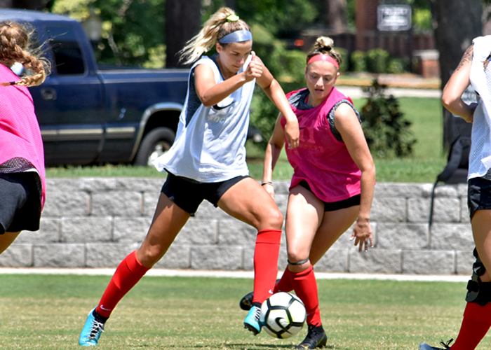 Lady Hawks want to keep moving forward in 2019