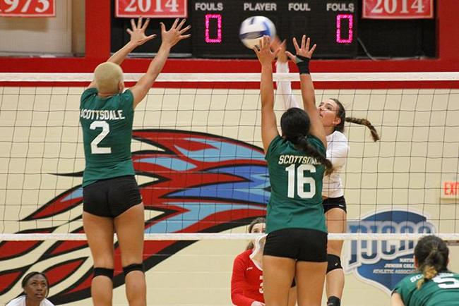 #17 T-Birds Blank Artichokes in Straight Sets, 3-0