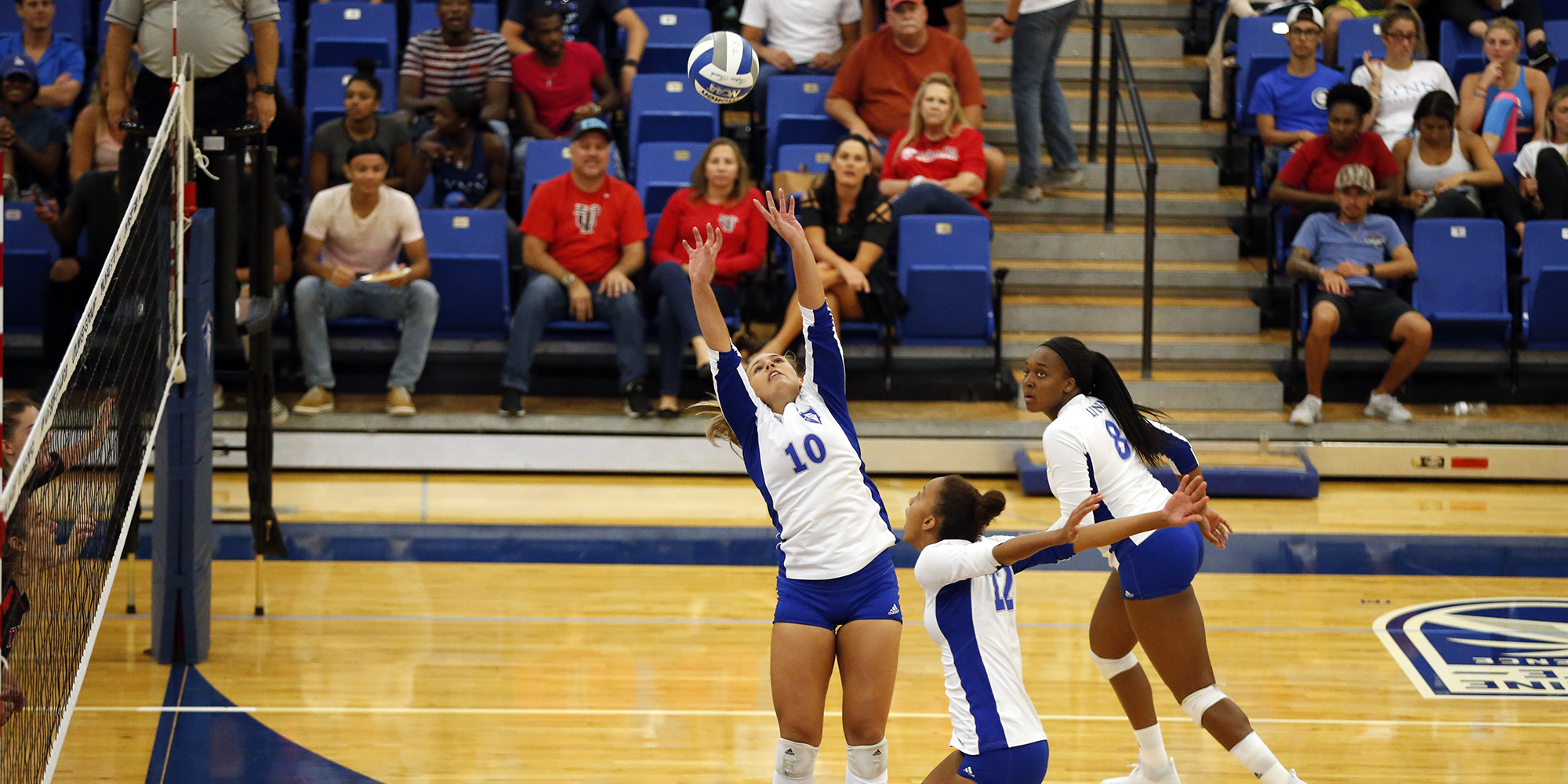 Volleyball Exchanges Sweeps on Opening Day of South Region Crossover