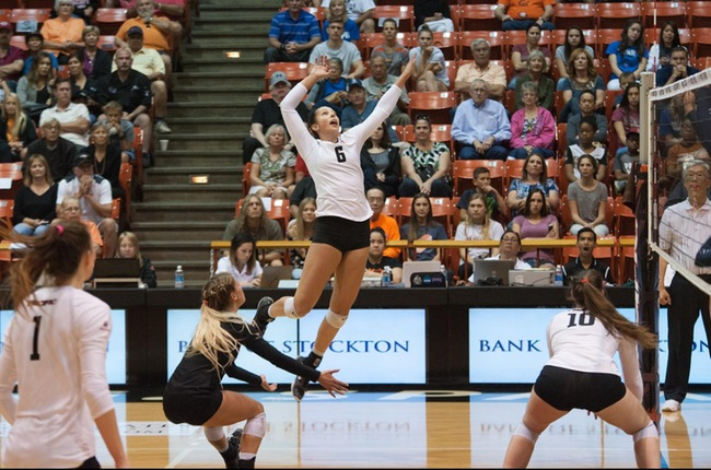 Pacific Downed In Three By #8 BYU