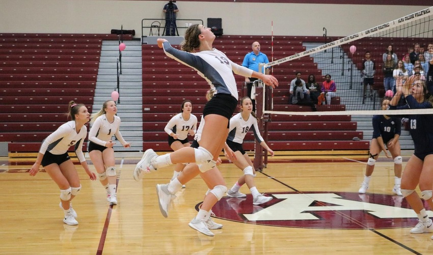 Volleyball Drops First Match of Year