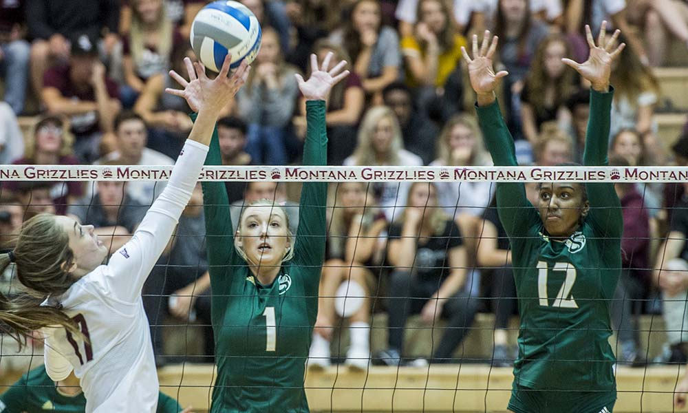VOLLEYBALL REMAINS PERFECT IN THE BIG SKY, POSTS 3-0 ROAD WIN AT MONTANA
