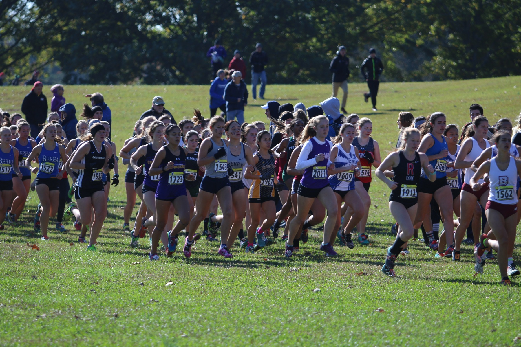 Women's Cross Country Competes In NCAA Regional Championship