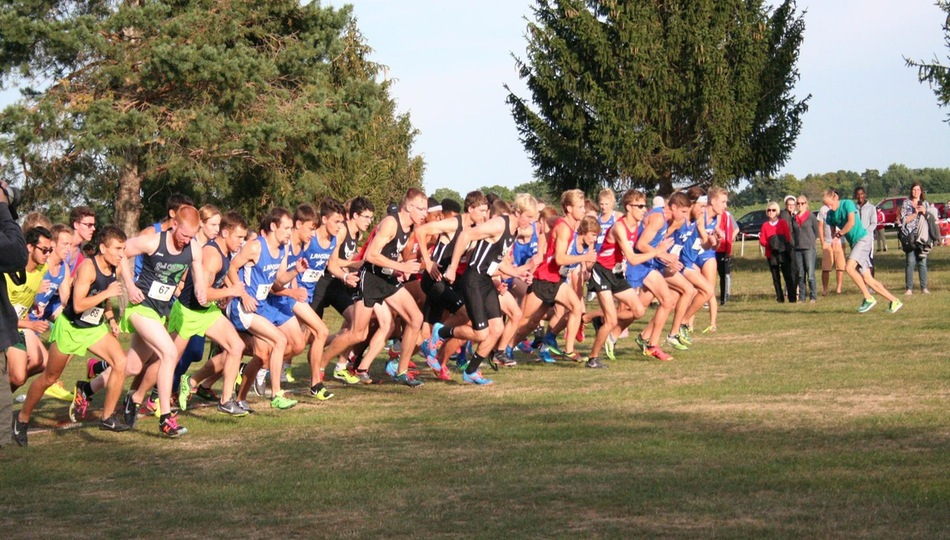 Adrian Cross Country Competes at Lansing Invitational