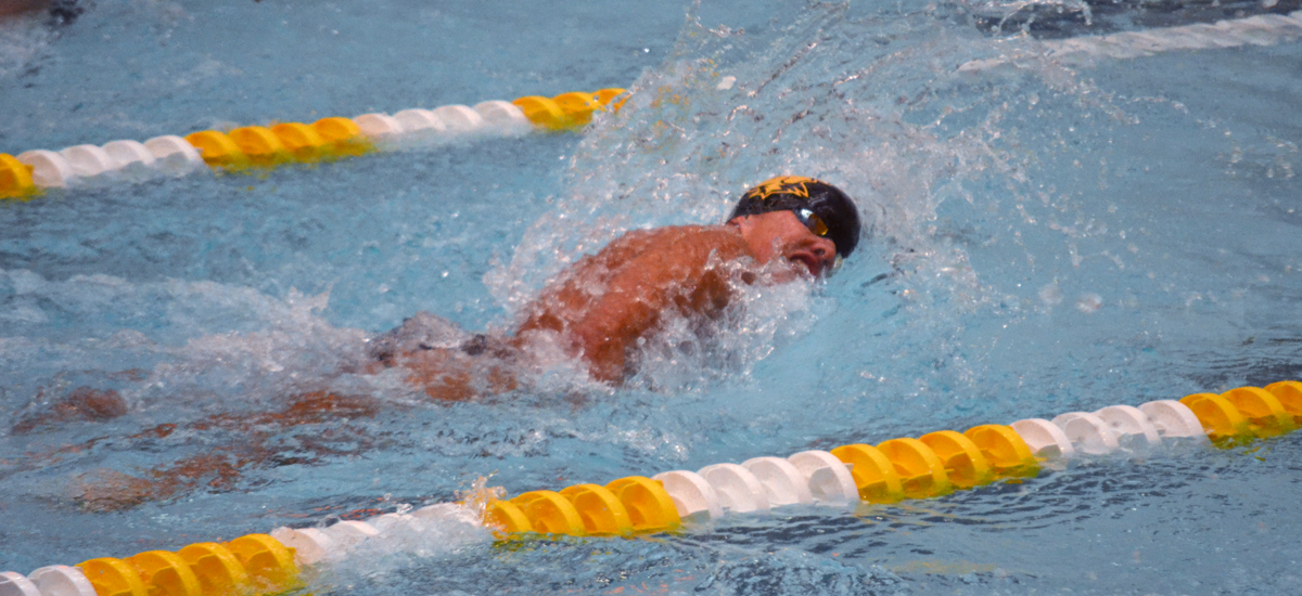 Swimming and Diving Splits at Towson on Saturday Afternoon