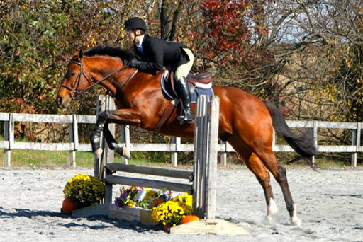 Radgowski, Bent Earn Blue Ribbons in Intermediate Division