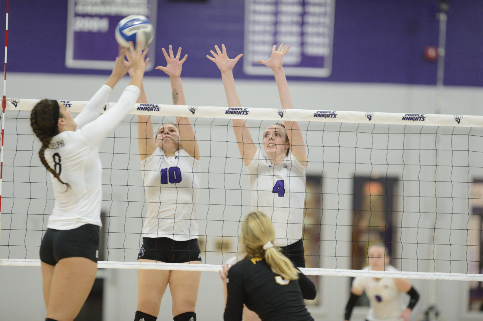 Volleyball Rolls To Fifth Win In Last Six Matches With Road Sweep Over Stonehill