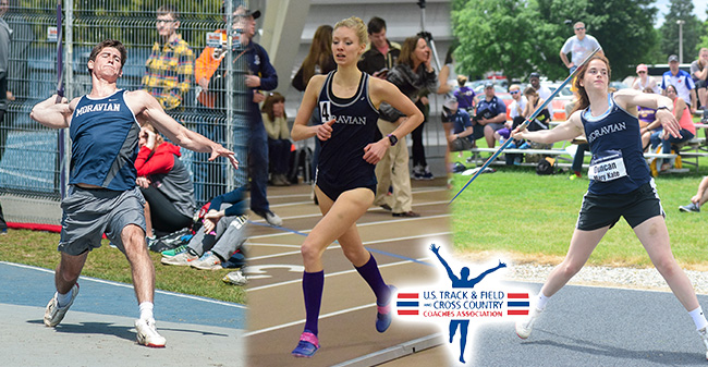 Three Greyhounds Earn USTFCCCA All-Academic Honors