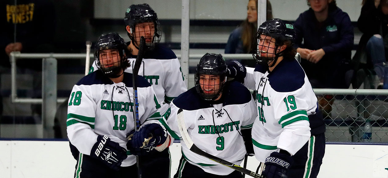 The Endicott men's ice hockey team celebrates a goal.