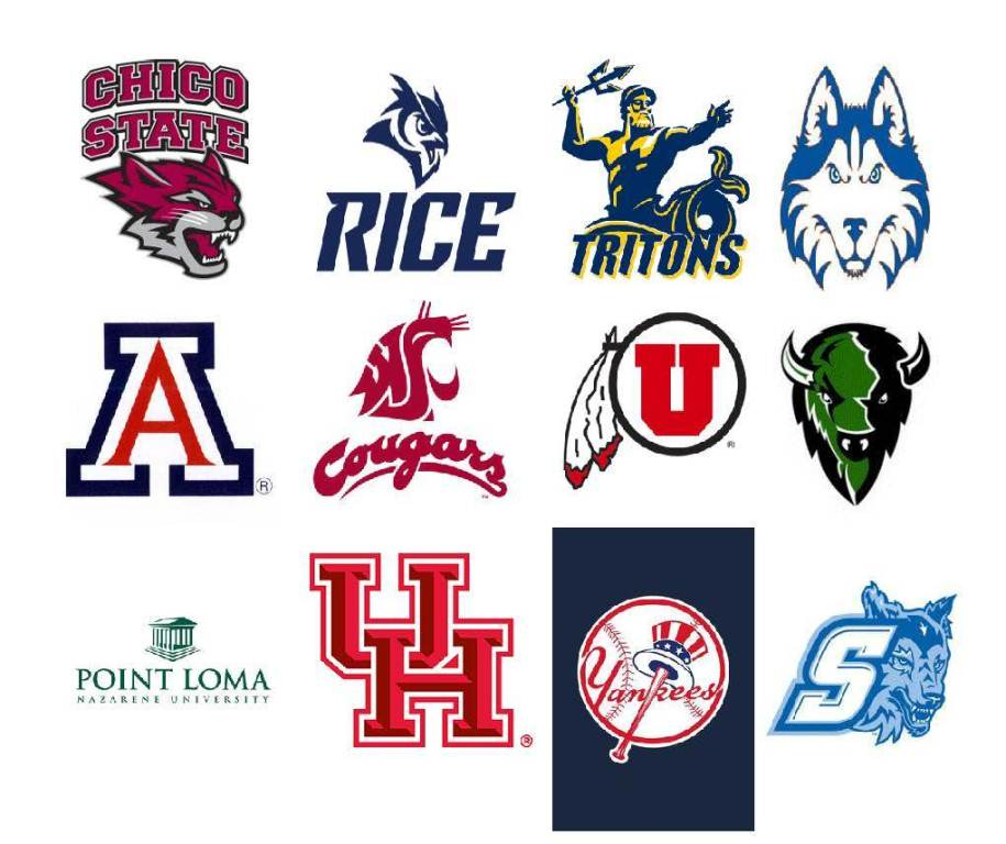 OCC baseball sends 16 players to next level