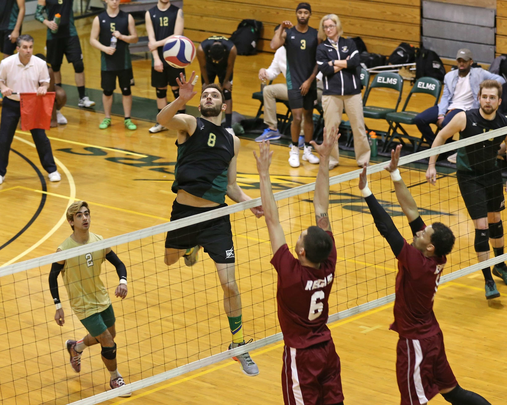 Regis Edges Men's Volleyball In Five-Set Conference Thriller