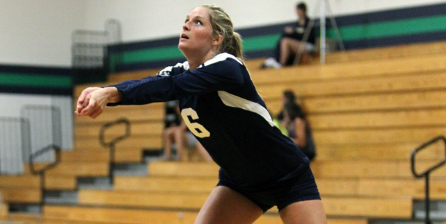 Endicott Drops Decision to Wheaton in Three Sets