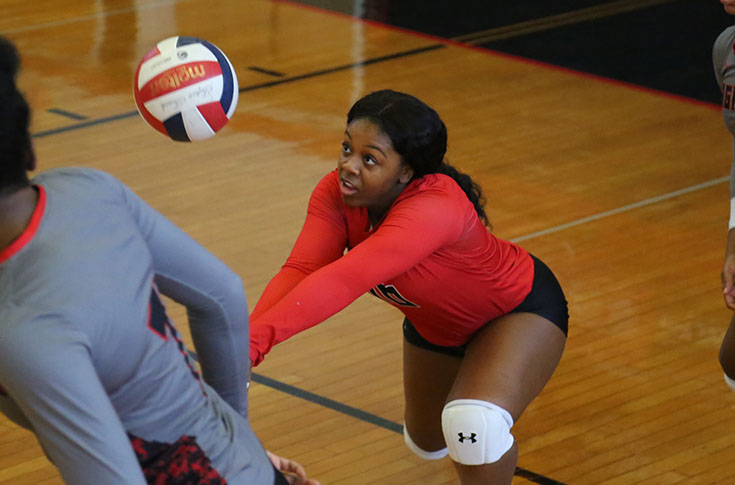 Volleyball: Panthers close out regular season with split at USA South quad match