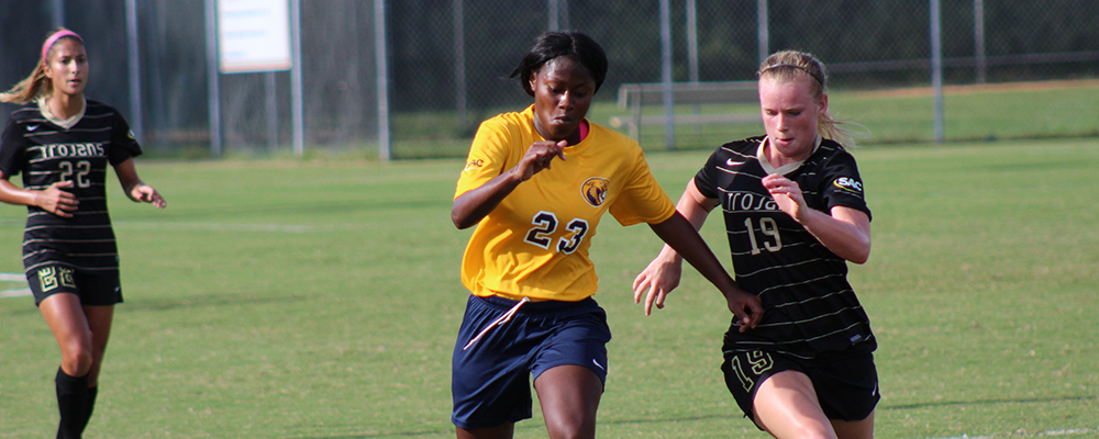 Cobras Fall in Conference Match to Lenoir-Rhyne