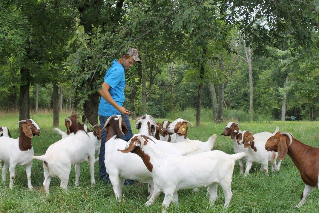 Noted goat farmer Williams nominated for Allstate NABC Good Works team