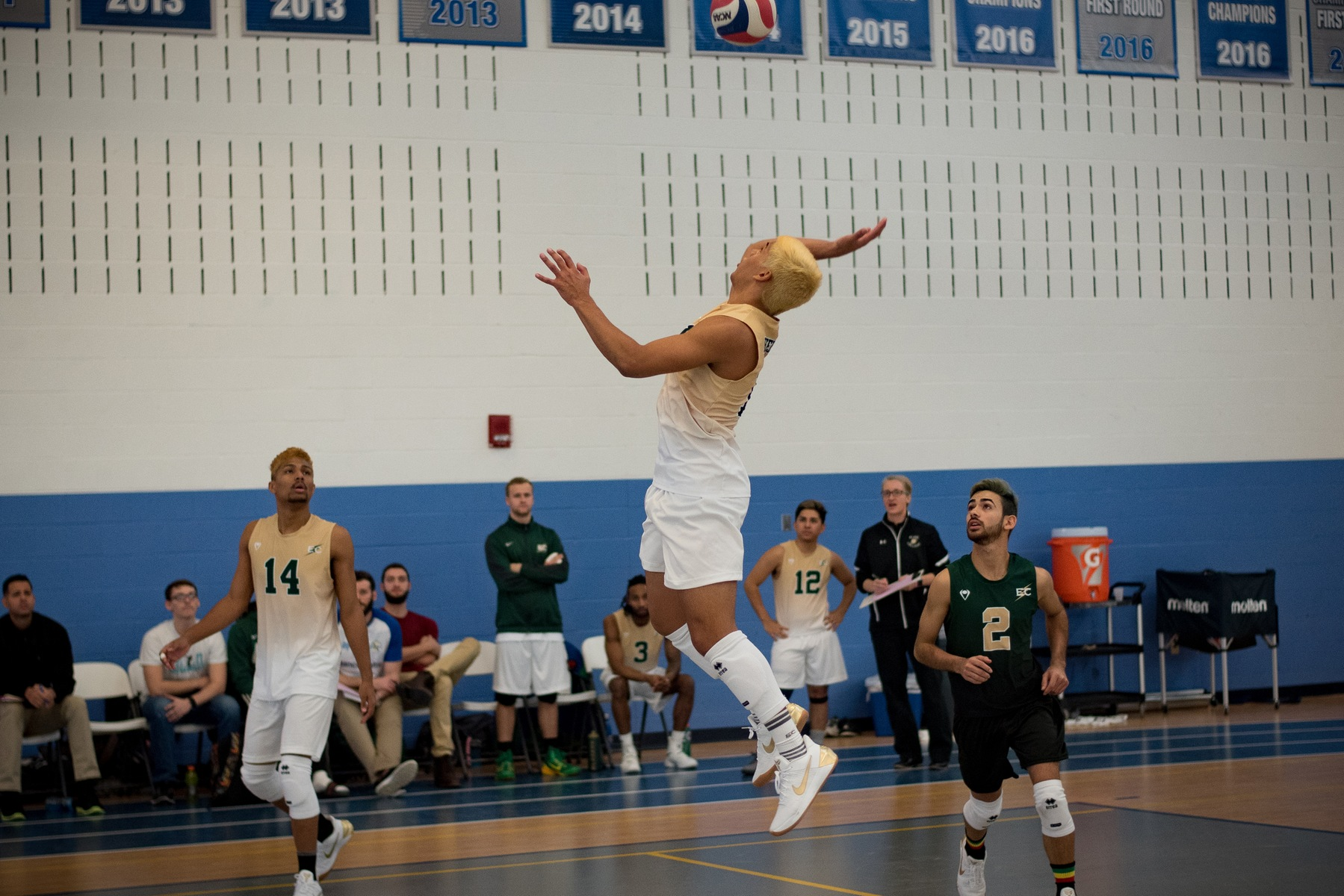 Men's Volleyball Has Win Streak Snapped By Wells College