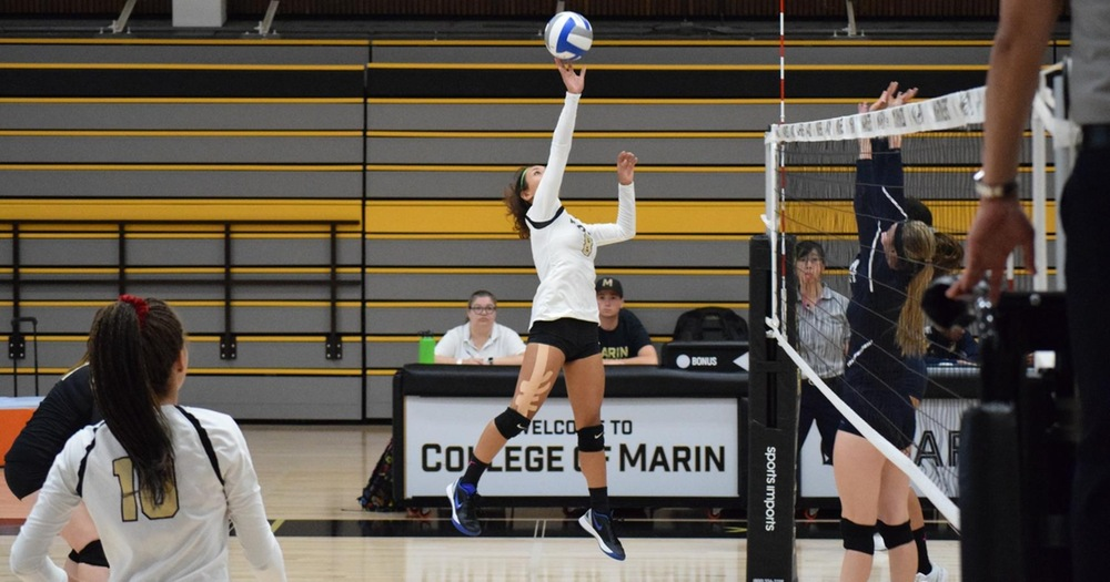 College of Marin Volleyball Sweeps Contra Costa To Keep Pace In BVC