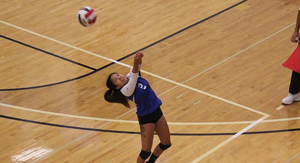 'Cats fall to Eagles in five, sweep Panthers