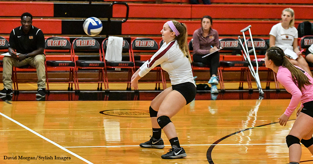 Volleyball Nipped by Neumann