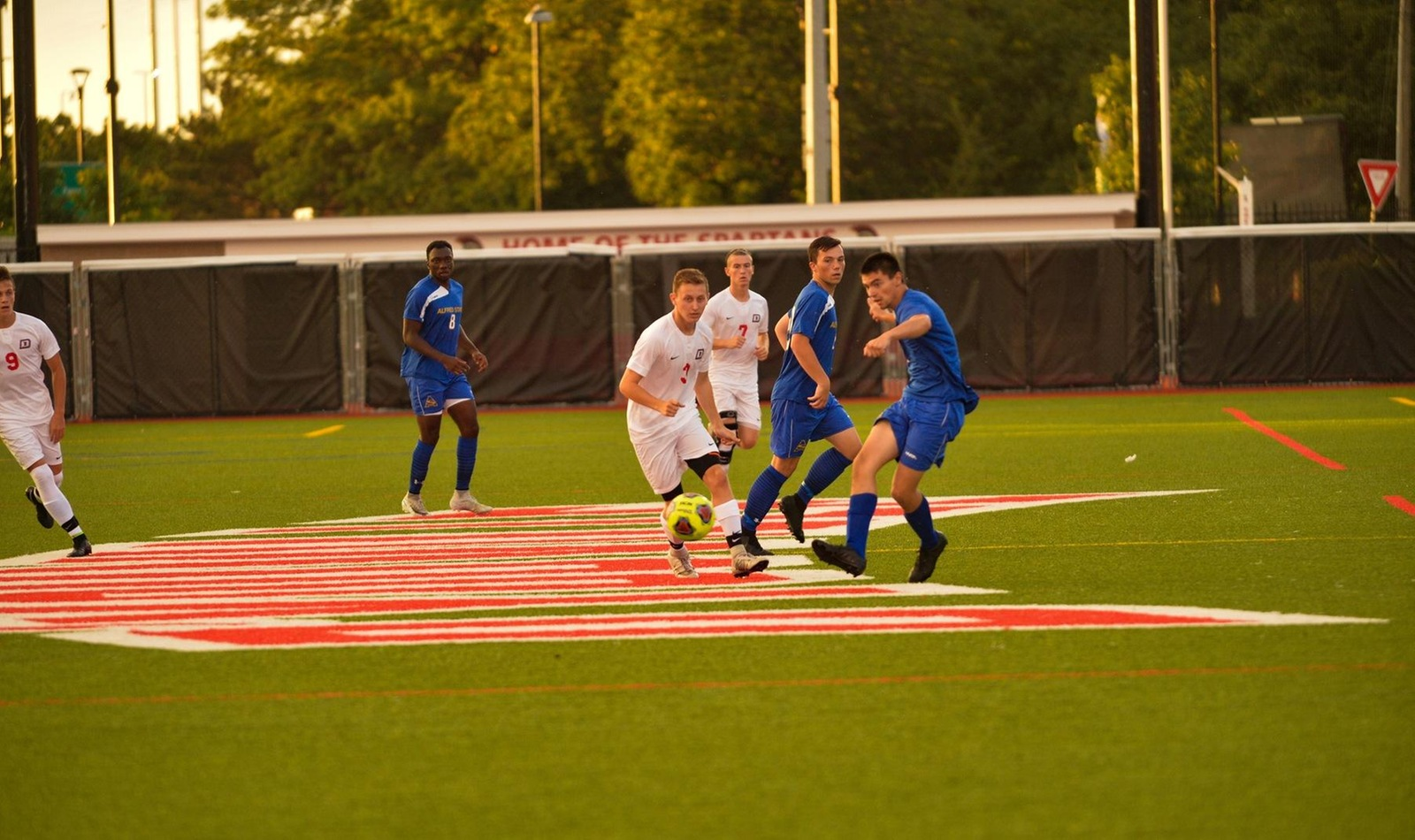 D'Youville Reaches End of Season in AMCC Playoffs