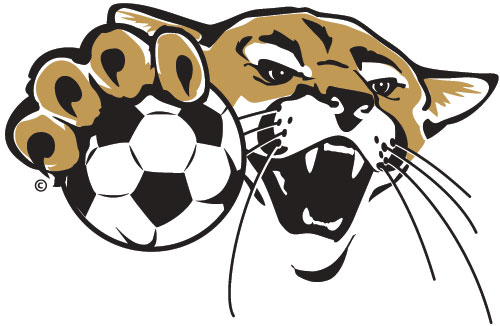 Image result for cougar soccer