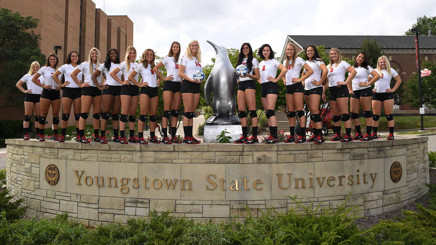 2018 Youngstown State Volleyball Team