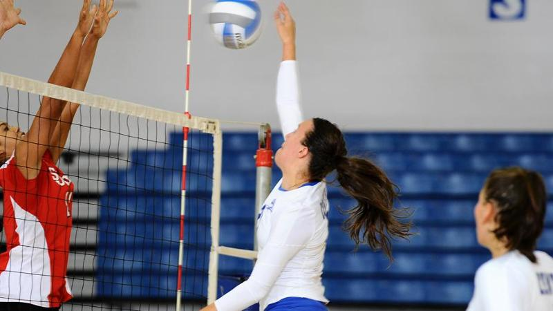 Volleyball Sweeps Quinnipiac
