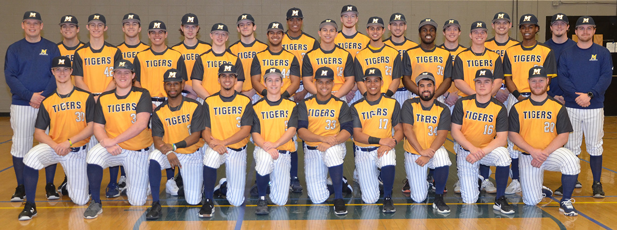 Eight Tigers Named to All-Region Teams