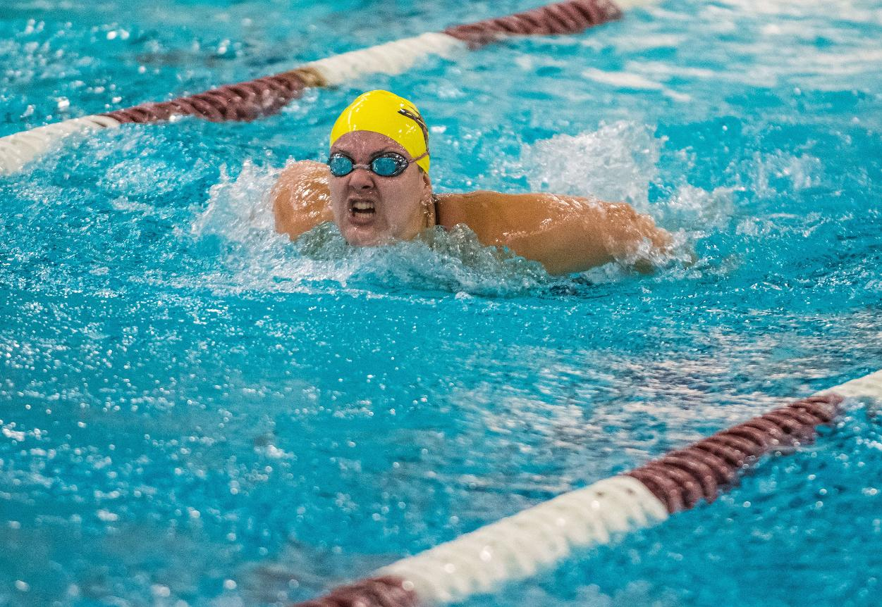Swimming And Diving Cadets Swept By Falcons In Semester Finale Norwich