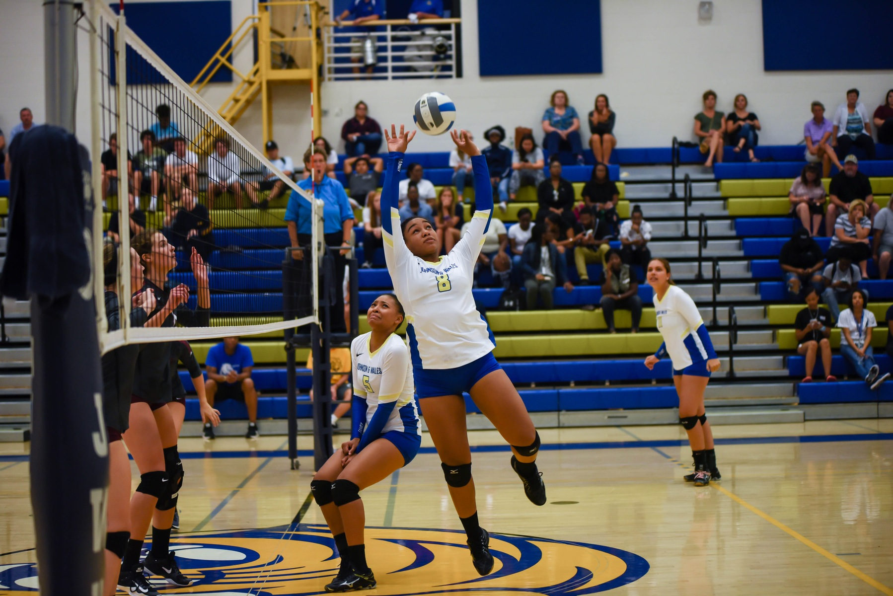 Volleyball Victorious At Livingstone